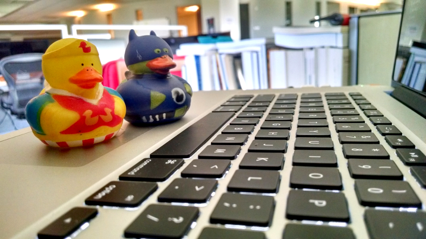 two rubber ducks pair programming